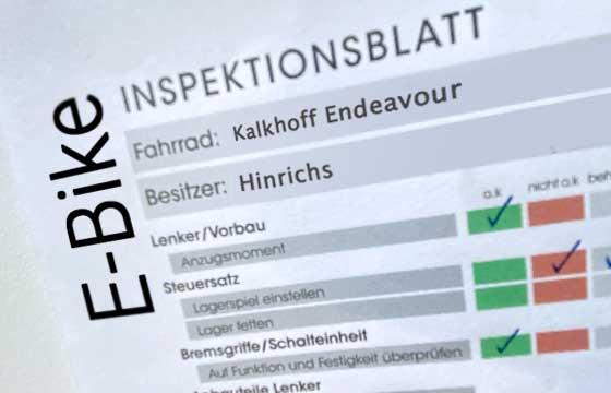 E-Bike Inspektion